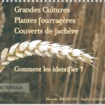 grandes cultures