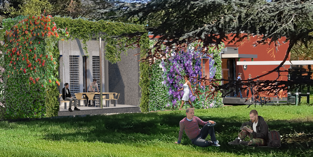 terrasse futur bâtiment 2